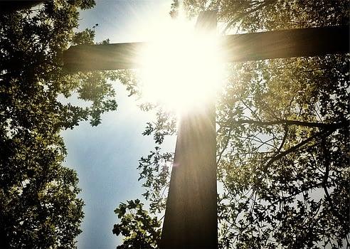 cross in the sunshine