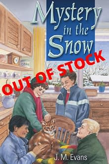 Mystery in the Snow Out of Stock