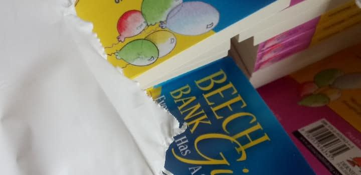 Beech Bank Girls Books from Dernier Publishing